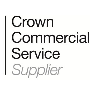 C-Stem Accreditation Crown Commercial Services